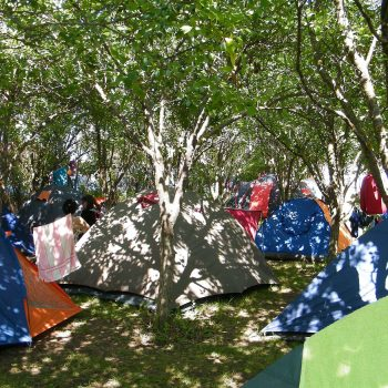 camping-vama-veche